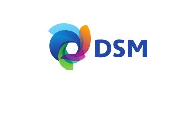DSM-partner
